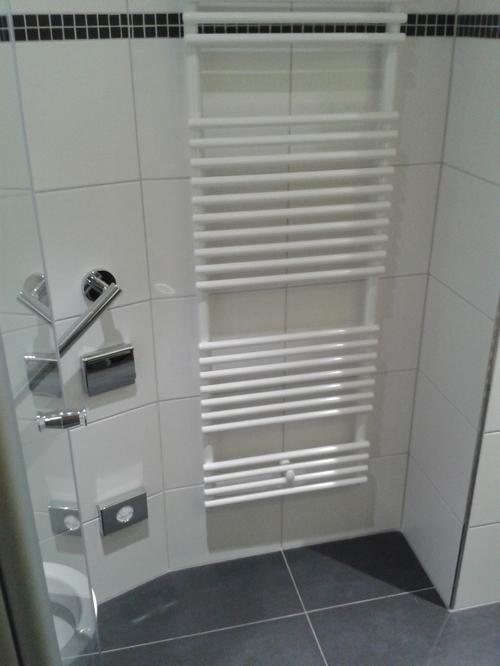 Zimmersanierung Bad